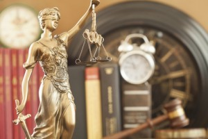 Lawyer for Court of Special Appeals